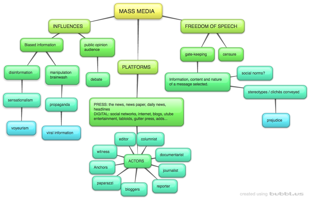 how media influences public opinion essay